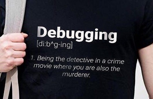 do yu have what it takes to get a job as a software engineer - debugging